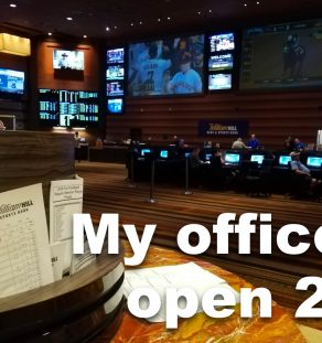 Nevada C corp or LLC to my sports handicapping business.